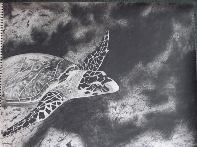 Katy Kerr  'Sea Turtle On Reef', created in 2010, Original Mixed Media.