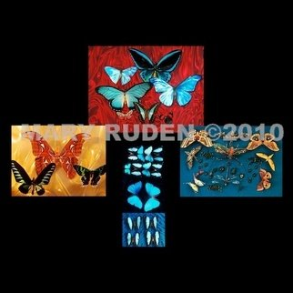 Mary Ruden: 'Bugs', 2010 Color Photograph, Nature. Artist Description:    Photo of actual  butterflies. Photos can be made any size, on many types of surfaces: vinyl, papers, backlit film.   ...