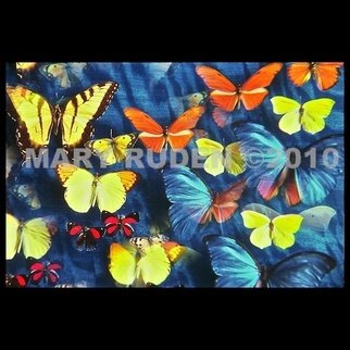 Mary Ruden: 'Fly Away', 2010 Color Photograph, Nature. Artist Description:       Photo of actual butterflies. Photos can be made any size, on many types of surfaces: vinyl, papers, backlit film.      ...