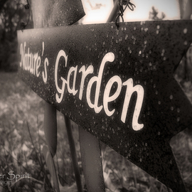 Erik Roman: 'Natures Garden', 2011 Black and White Photograph, Landscape. Artist Description:  Garden sign in my wife's garden. ...