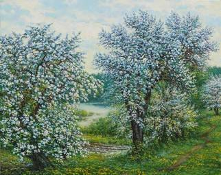 Petr Parkhimovitch: 'belakvet', 2016 Oil Painting, Landscape. Artist Description: May. Blooming gardens. Apple and pear are covered with floral white.Oil on canvasThe artwork on the stretcher, without a frame, signed on the front and back side, has a Certificate of Authenticity, certified by expertise.Offer your price. ...