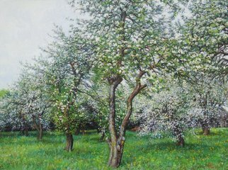 Petr Parkhimovitch: 'silver flower', 2017 Oil Painting, Landscape. Artist Description: The cool May day is filled with the aroma of apple blossom.Original paintingThe artwork on the stretcher, without a frame, signed on the front and back side, has a Certificate of Authenticity, certified by expertise.Offer your price. ...
