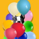 Boston Terrier Celebration By Patti Meador