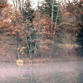Paula Durbin: 'Biltmore', 2001 Color Photograph, Landscape. Artist Description: Giclee Print. May be printed in other sizes and processes. ...