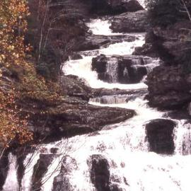 Paula Durbin: 'Carolina Waterfall', 2001 Color Photograph, Landscape. Artist Description: Fresson Print.  May be printed in other sizes and processes. ...