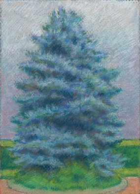 P. E. Creedon Artwork Blue Spruce Alone, 2012 Pastel, Landscape