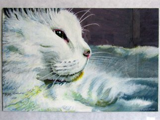Cats Acrylic Painting by Pete Wiseman Title: Sunnyside, created in 2012