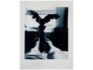 Marilyn Nosewicz: 'Bird  Window Room Figure Black White Silver Gelatin Photograph', 2011 Black and White Photograph, Abstract Figurative. Artist Description:     Black and White Photograph of Bird Flying From figure to Window. Photographed with black and white film, film camera. Hand Printed in darkroom with chemicals. Silver Gelatin Photograph. Re- Printed, via tileing 9 tiles, mounted to Board. Hand signed on front of photograph. Email me for other questions. ...