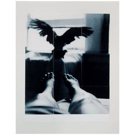 Marilyn Nosewicz Artwork Bird  Window Room Figure Black White Silver Gelatin Photograph, 2011 Black and White Photograph, Abstract Figurative