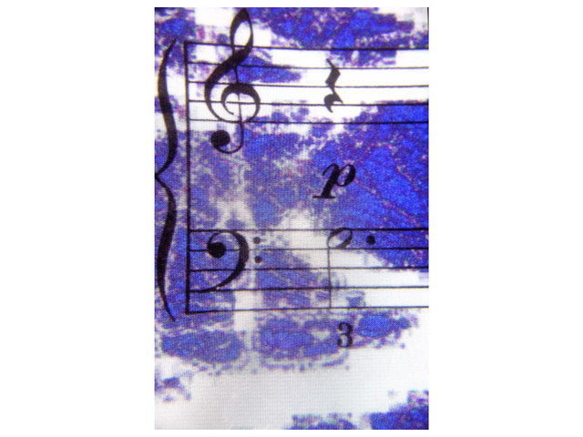 Marilyn Nosewicz  'Music Blue Notes Color Photography', created in 2010, Original Printmaking Giclee - Open Edition.