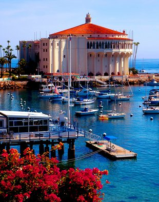 Timothy Oleary: 'Catalina California', 2008 Other Photography, Travel.  Catalina in its full color! ...