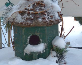 Artist: C. A. Hoffman - Title: Birdies Frosted Home - Medium: Color Photograph - Year: 2010