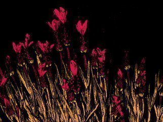 C. A. Hoffman Artwork Blood Red Field Flowers, 2009 Color Photograph, Abstract Landscape