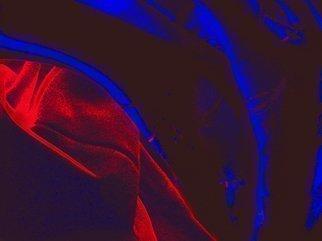 Color Photograph by C. A. Hoffman titled: Blue Velvet Echos, 2009