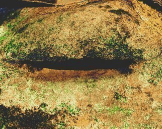 C. A. Hoffman Artwork Crevice V, 2011 Color Photograph, Abstract Landscape