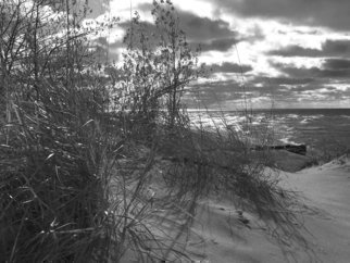 C. A. Hoffman: 'Dawns Early Light', 2010 Black and White Photograph, Landscape. Artist Description:   This is an original photo that has been digitally- painted to create an original work of art.                                                                                ...