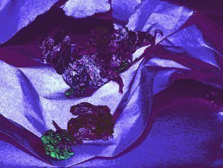 C. A. Hoffman: 'Down and Discarded Lavenders', 2009 Color Photograph, Abstract.