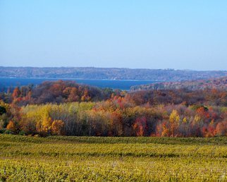 Color Photograph by C. A. Hoffman titled: Fall Vineyard Landscape, created in 2008
