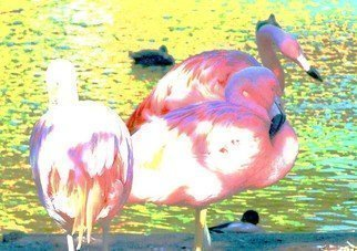 C. A. Hoffman Artwork Flamingo Pastels I, 2008 Flamingo Pastels I, Abstract Figurative