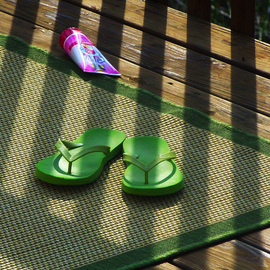 Green FlipFlops On the Waterfront By C. A. Hoffman
