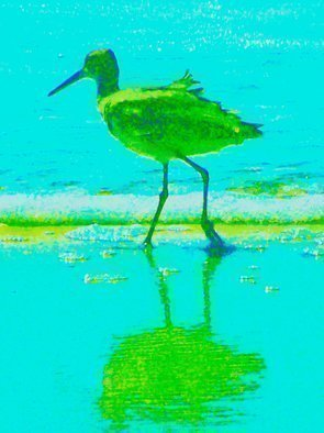 C. A. Hoffman Artwork Green Sea Strollin, 2009 Color Photograph, Abstract Landscape
