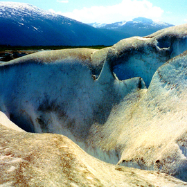 Mendenhall Glacier  Tongass National Forest AK  By C. A. Hoffman