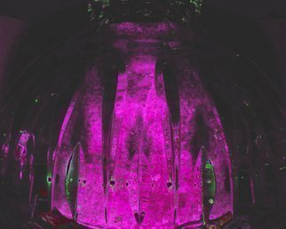 Artist: C. A. Hoffman - Title: Nexiuums Purple Dome - Medium: Color Photograph - Year: 2009