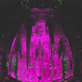 C. A. Hoffman: 'Nexiuums Purple Dome', 2009 Color Photograph, Abstract.