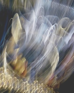 C. A. Hoffman Artwork Return of the Light Brigade I, 2011 Color Photograph, Abstract