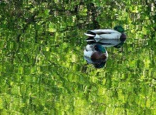 C. A. Hoffman Artwork Secret Duck Pond, 2008 Secret Duck Pond, Abstract Landscape