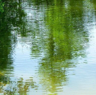 Color Photograph by C. A. Hoffman titled: Serenity Lake Impressionism, 2008