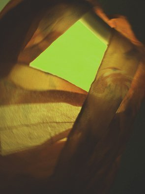C. A. Hoffman: 'Silk Evening in Green', 2009 Color Photograph, Abstract.