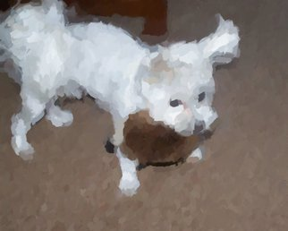 C. A. Hoffman Artwork Snow Pup With Hedgehog, 2009 Snow Pup With Hedgehog, Abstract Figurative