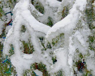 Artist: C. A. Hoffman - Title: Those Icy Fingers - Medium: Color Photograph - Year: 2011