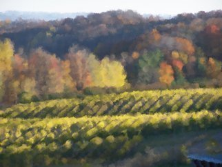 Color Photograph by C. A. Hoffman titled: Vineyards For Monet, created in 2009