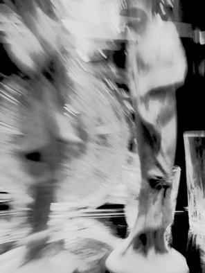 C. A. Hoffman Artwork Wasnt She Elegant, 2009 Black and White Photograph, Abstract Figurative