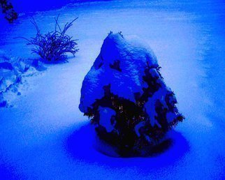 Color Photograph by C. A. Hoffman titled: Winters Gift, created in 2009