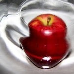 Wormhole Apple III By C. A. Hoffman