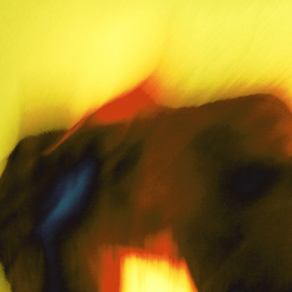 C. A. Hoffman Artwork Yellow Savannah Day, 2010 Color Photograph, Abstract