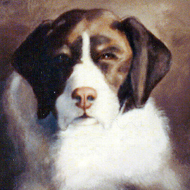 Michael Pickett Artwork Brown And White Dog, 1996 Acrylic Painting, Dogs