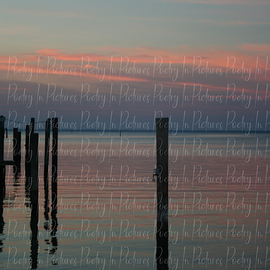 sunset on the gulf  By Tracy Brown