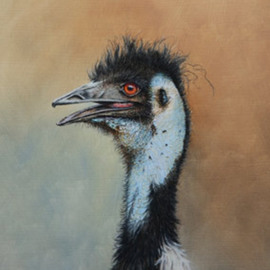 Emu, Stephen Powell