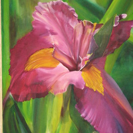 Cherie Salinas: 'Purple Iris', 2012 Oil Painting, Floral. Artist Description:   This is a vibrant oil painting using purple and deep greens.  If flowers are your thing this iris is for you.  ...