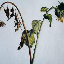 suflowers painting realistic  flowers art paintings