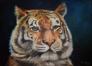 Raluca Tifrea: 'tiger', 2016 Oil Painting, Animals. Artist Description: In the kingdom of spirit animal, the tiger puts a special emphasis on raw feelings and emotions. The tiger spirit animal symbolizes primal instincts, unpredictability, and ability to trust yourself. By affinity with this spirit animal, you may enjoy dealing with life matters spontaneously, trusting your intuition and ...