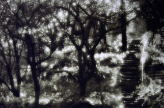 Anatoly Raspopov Artwork Jardin, 2012 Black and White Photograph, Psychic