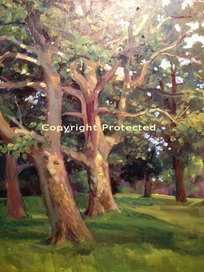 Artist: Ron Anderson - Title: Franklin Park through the Trees - Medium: Oil Painting - Year: 2009