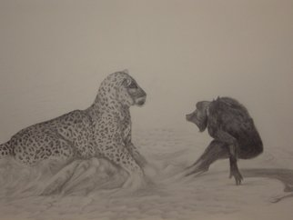 Freddie Shelton Artwork Clash, 2008 Clash, Animals