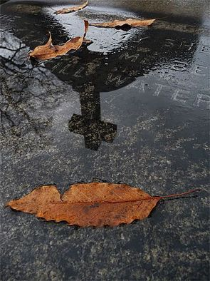 Artist: Robert Reinhardt - Title: Till Water - Medium: Color Photograph - Year: 2009