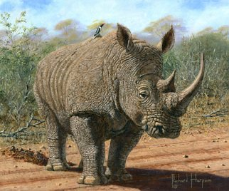 Richard Harpum Artwork Kruger White Rhino, 2014 Acrylic Painting, Wildlife